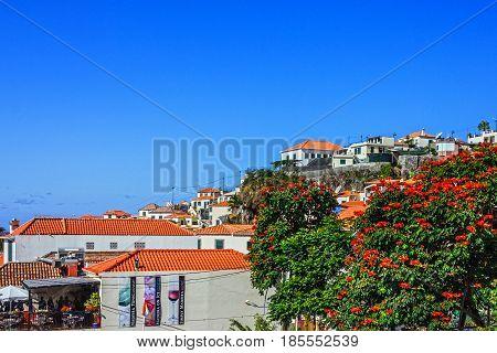 MADEIRA, PORTUGAL - APR 18 2017: Fishing village Camara de Lobos Madeira, Portugal.