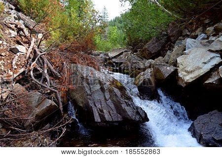 Between the hillock and the rock there flows a mountain cold and fast river, it falls down a waterfall on the rocks and continues its road among the pines and birches