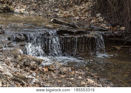 Stream in the forest. Small waterfall in the wilderness. Stones and fallen leaves. Horizontal rectangular photo.