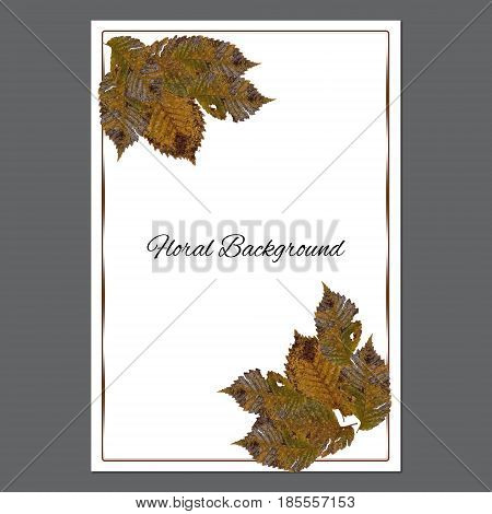 Background Texture Made Hawthorn Dry Pressed Isolated Rusty Sheet And Place For Text