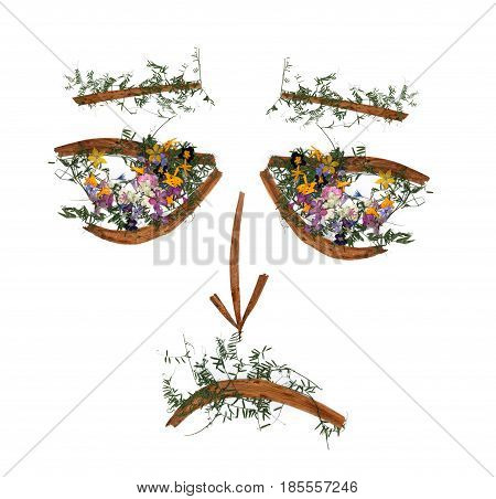 application sad male face of dried pressing bright multicolor flowers long stiff brown iris leaves in the form of eye
