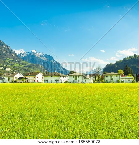 Panorama of the town of Brunnen. Alpine meadows with luscious bright grass. Travel to Europe.