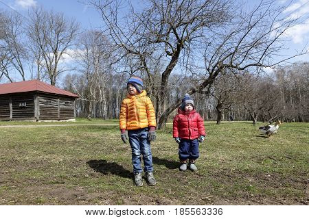Two children walking at farm in spring
