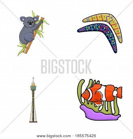 Koala on bamboo, boomerang, Sydney tower, fish clown and ammonium.Australia set collection icons in cartoon style vector symbol stock illustration .