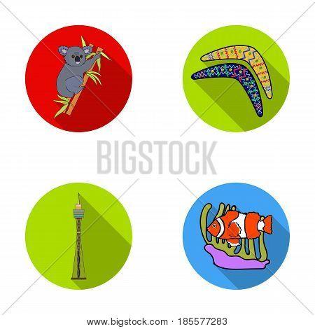 Koala on bamboo, boomerang, Sydney tower, fish clown and ammonium.Australia set collection icons in flat style vector symbol stock illustration .
