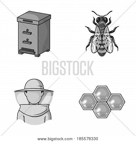 The bee, the bee-keeper in the mask, the honeycomb of the honey.Apiary set collection icons in monochrome style vector symbol stock illustration .