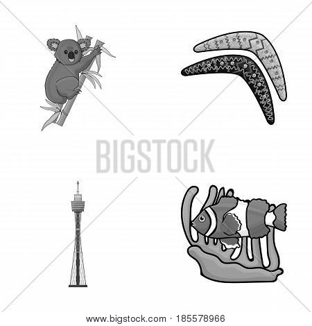Koala on bamboo, boomerang, Sydney tower, fish clown and ammonium.Australia set collection icons in monochrome style vector symbol stock illustration .