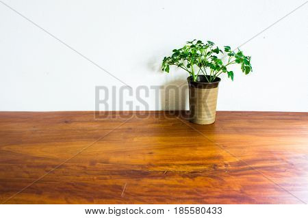 The Vase on a wooden table with white background