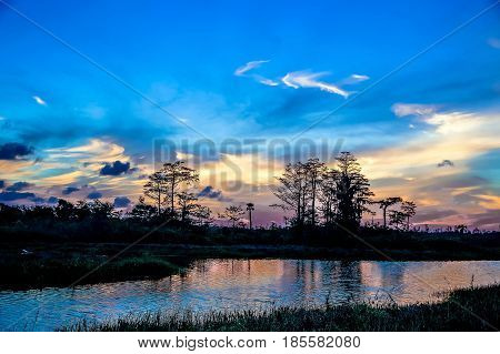 Reflections Of Sunset Silhouette In The Cypress Swamp