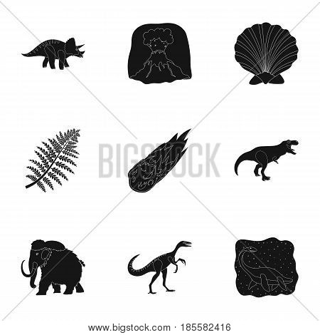 Ancient extinct animals and their tracks and remains. Dinosaurs, tyrannosaurs, pnictosaurs. Dinisaurs and prehistorical icon in set collection on black style vector symbol stock web illustration.