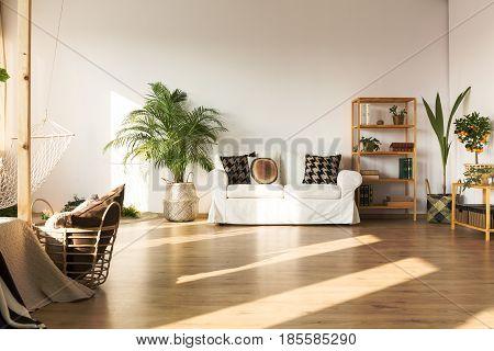 Open plan apartment with hammock sofa bookcase plants floor panels