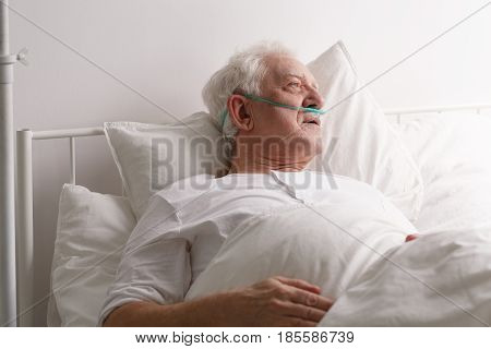 Man Dying In Hospital Bed
