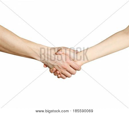 Handshake Men And Women. Isolated On A White Background