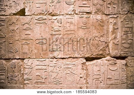 BERLIN GERMANY - APRIL 7: Egyptian hieroglyph on the wall in Egyptian museum on April 7 2017 in Berlin