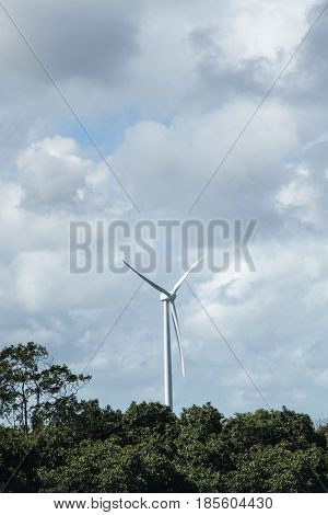 Wind turbine on woods