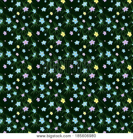 Vector floral seamless pattern. Illustration of little cute colored flowers. Blue pink violet and yellow florets on the dark background with grass elements