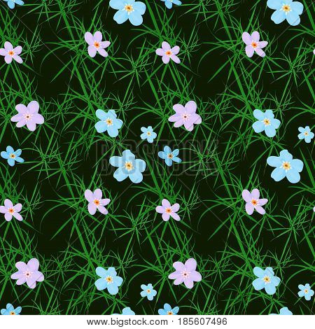 Vector floral seamless pattern. Illustration of little cute colored flowers. Blue and pink florets on the dark background with grass elements