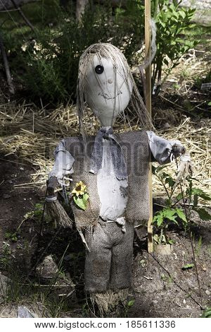 Close up vertical of a whimsical scarecrow in a dried out garden in Notre Dame de Ile Perrot, Quebec on a sunny day in June.