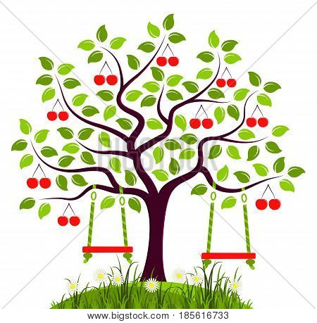 vector cherry tree with swings isolated on white background