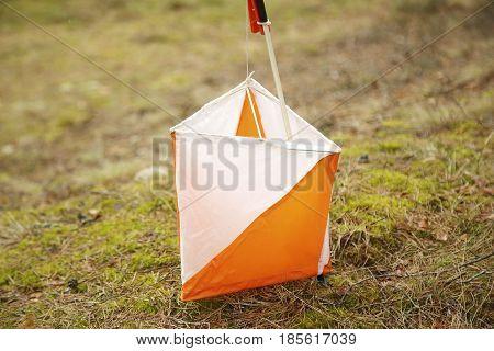 Orienteering Marker In The Forest
