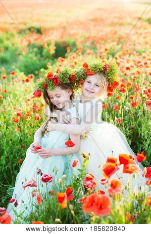 kid models, summer, childcare, happy childhood, fashion concept - two cute little girls in sunday dresses with flower wreaths on heads hugging in the middle of poppy field