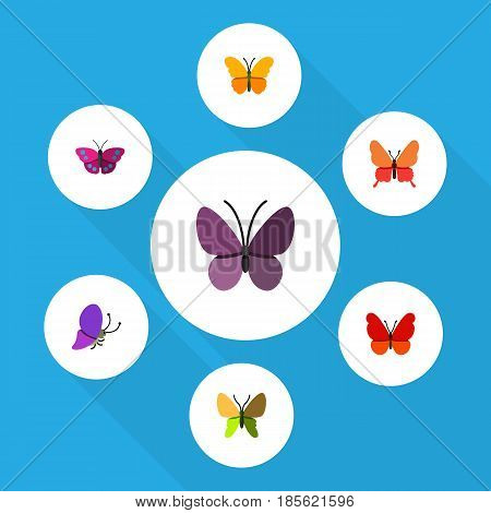 Flat Moth Set Of Violet Wing, Summer Insect, Beauty Fly And Other Vector Objects. Also Includes Monarch, Archippus, Moth Elements.