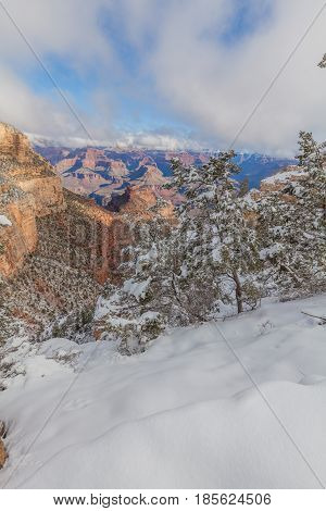 the grand canyon south rim after a winter snow
