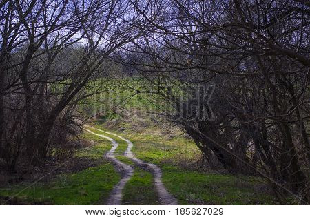 Unpaved dirt road in the countryside spring landscape on a cloudy day