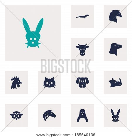 Set Of 12 Beast Icons Set.Collection Of Steed, Bunny, Night Fowl And Other Elements.