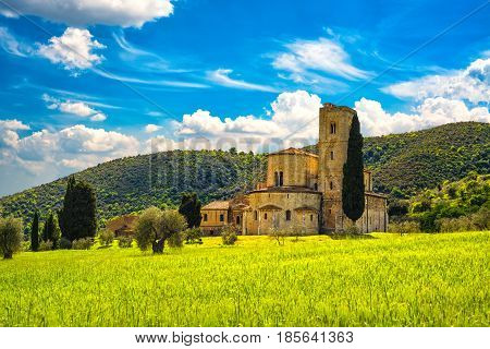 Sant Antimo Castelnuovo Abate Montalcino church trees and wheat field. Val d Orcia Tuscany Italy Europe