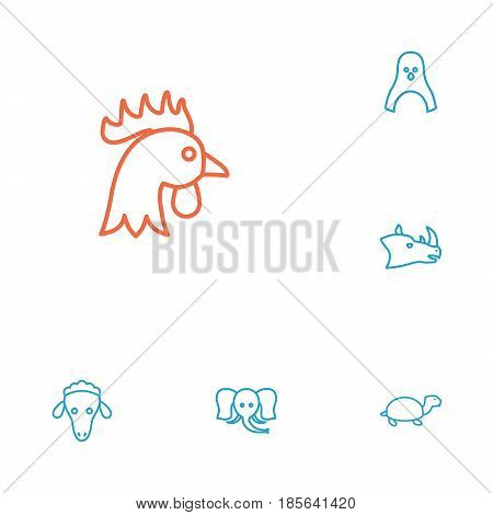 Set Of 6 Brute Outline Icons Set.Collection Of Rhino, Penguin, Sheep And Other Elements.