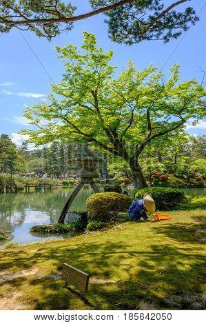 Japanese gardener near the Toro lantern in Kenrokuen a japanese garden in Kanazawa Ishikawa prefecture Japan