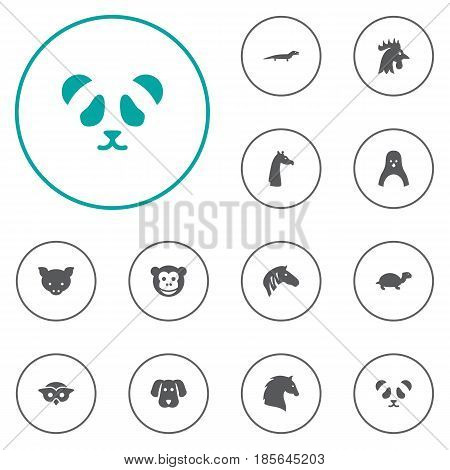 Set Of 12 Beast Icons Set.Collection Of Bear, Gecko, Tortoise And Other Elements.
