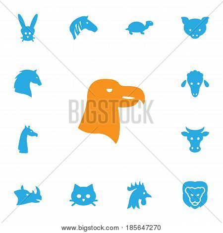 Set Of 13 Alive Icons Set.Collection Of Wildcat, Rhinoceros, Tortoise And Other Elements.