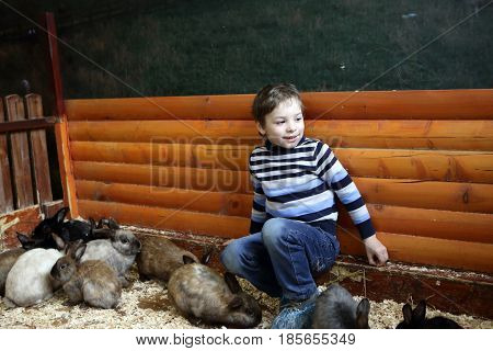 Child and rabbits on the farm indoor