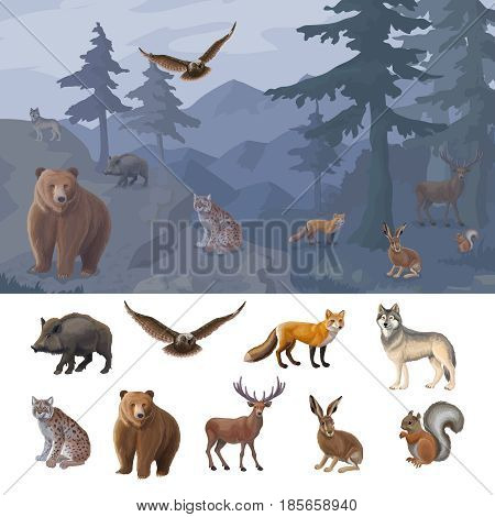 Cartoon colorful forest animals set with wild boar owl fox wolf lynx bear deer hare squirrel vector illustration