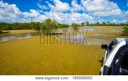 Low tide with muddy sand in Mozambique