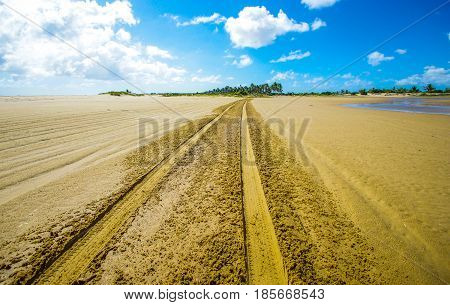 Tire tracks with soft sand and low tide in Mozambique