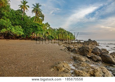 Wide angle view of pacific ocean, beach and palm tree forest in Drake Bay, Costa Rica