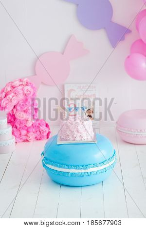 first birthday smash the cake. A pink cake stands on a large blue macaroon. First birthday.