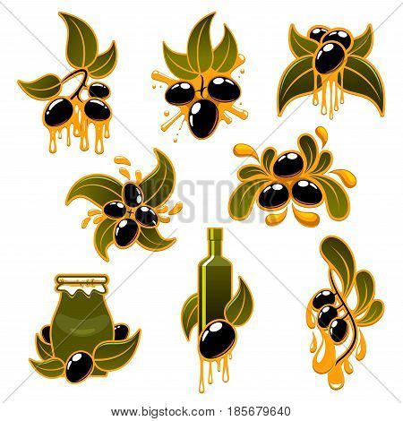 Olive oil and olives vector icons. Symbols of fresh black olives on branches with dripping extra virgin oil drops, product bottles and jars. Design for natural organic cuisine and healthy cooking