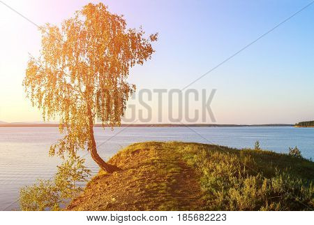 Summer picturesque water landscape -summer birch standing on the cliff at Irtyash Lake in Southern Urals Russia. Summer sunset landscape with birch tree in summer evening. Lake waters in summer sunset. Summer water landscape