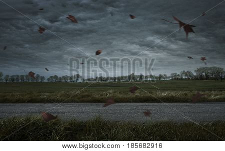 Empty autumn stormy background with copy space