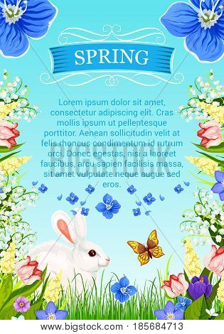 Spring time vector poster with greetings. Design of springtime flowers and floral bouquets of blooming crocuses, tulips and daffodils, butterflies and bunny in green grass and garden roses blossoms