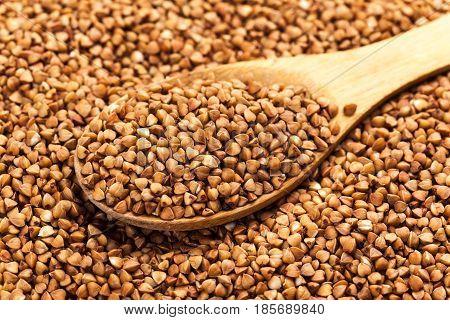 Buckwheat texture high-quality photograph of premium buckwheat groats