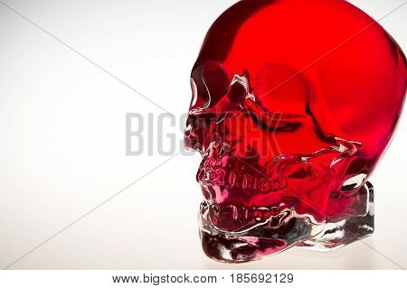 Red crystal skull red glass brainpan with white background detail