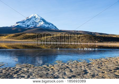 Sajama volcano and lake Huayñacota in the Natural Park of Sajama. Bolivia