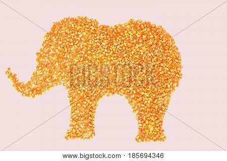. The dried corn kernel is an elephant on a white background.