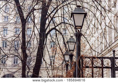 Old vintage street light lamp on black rod