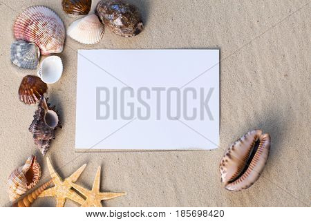 holiday beach concept with shells seastars and an blank postcard